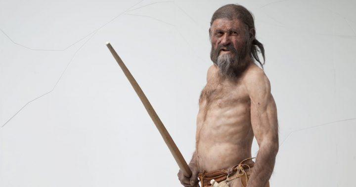 Ötzi als Rekonstruktion